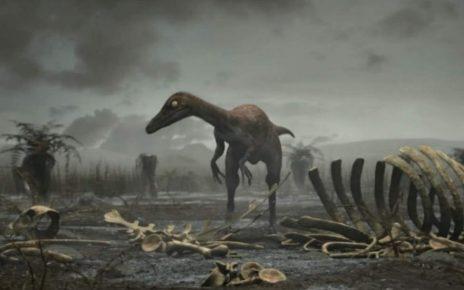 disparitia dinozaurilor