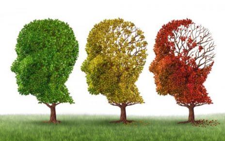 îmbătrânirea creierului