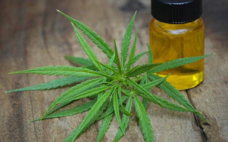 ulei cannabis